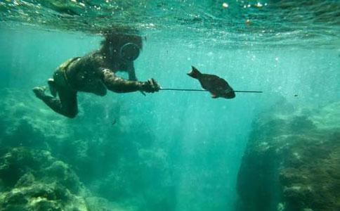 瓦努阿图海洋资源