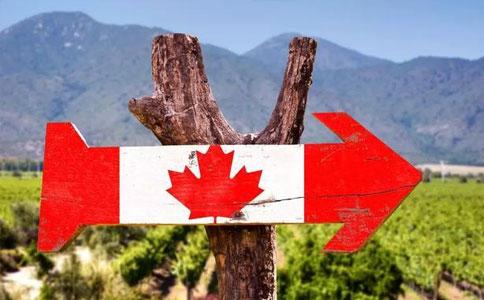 如何移民加拿大